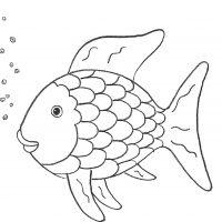 der regenbogenfisch von marcus pfister - offizielle website